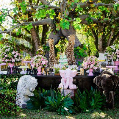 Festa Safari Rosa - Andrea Guimaraes Party Planner