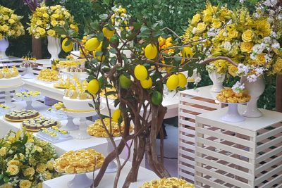 Festa Limão Siciliano - Andrea Guimaraes Party Planner