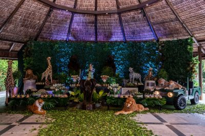 Festa Safari - Andrea Guimaraes Party Planner