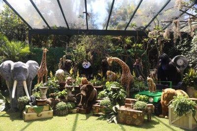 Festa Zoológico - Andrea Guimaraes Party Planner
