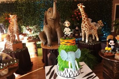 Festa Animal Kingdom - Boston EUA - Andrea Guimarães Party Planner