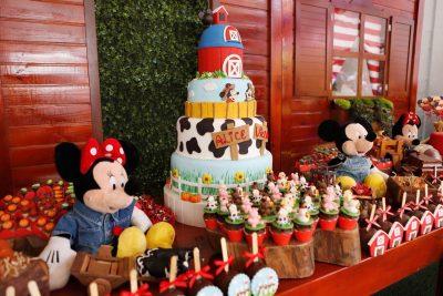 Festa Disney Country - Alice e Vicente - Andrea Guimarães Party Planner
