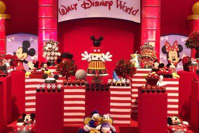 Festa Disney - João Valentin - Andrea Guimarães Party Planner