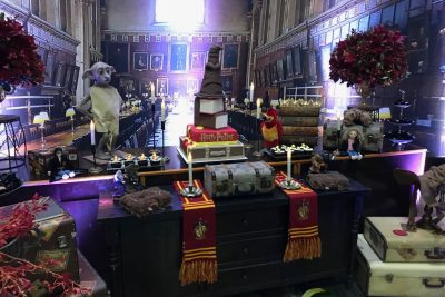 Festa Harry Potter - Andrea Guimarães Party Planner